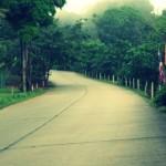 Big Buddha Road